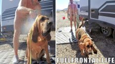 NUDE Dog Wash – EXTENDED VERSION - FullFrontal.Life